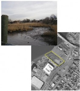 Hess Mitigation Site