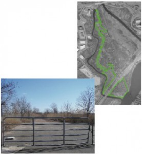 Rutherford Landfill