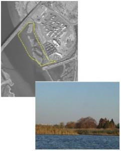 Lombardi Marsh